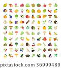 vector fruits fruit 36999489