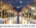 Illuminations of Hakodate Hachimanzaka 37001565