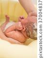 洗澡 沐浴 嬰兒 37004837