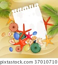 Starfish, shells and palm tree on sand background 37010710