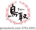 tottori prefecture, calligraphy writing, cherry blossom 37011601