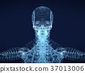 shining dots and line of skeleton ,body  human 37013006