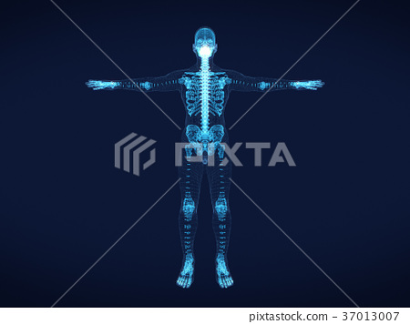shining dots and line of skeleton ,body  human 37013007