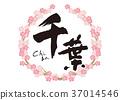 calligraphy writing, cherry blossom, cherry tree 37014546