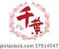 calligraphy writing, cherry blossom, cherry tree 37014547