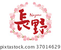 Nagano brush character cherry blossom frame 37014629