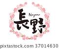 Nagano brush character cherry blossom frame 37014630
