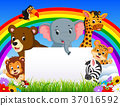 cartoon animal with blanksign and rainbow 37016592
