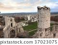 castle, Ogrodzieniec, ruins 37023075