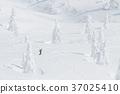 스키, 눈, 스노우 37025410