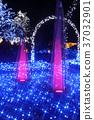 ประดับไฟ,แสง เบา,การส่องสว่าง 37032901