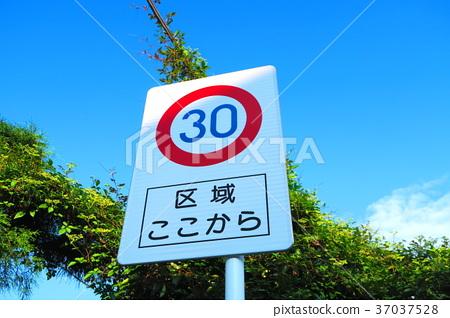 限速標誌30公里/小時 37037528