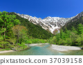 kamikochi, fresh verdure, tender green 37039158