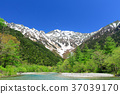 kamikochi, fresh verdure, tender green 37039170