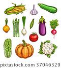 蔬菜 食物 食品 37046329