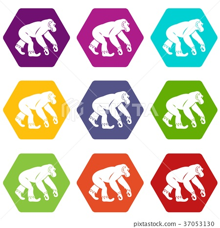 Monkey standing icon set color hexahedron 37053130