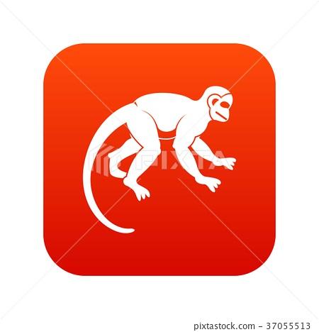 Capuchin monkey icon digital red 37055513