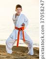 Boy doing karate poses 37058247