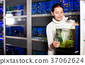 Girl looking at young fishes in aquarium 37062624