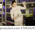 woman looks with admiration at the aquarium with small fish 37062629