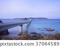 สะพาน,ประเทศญี่ปุ่น,มหาสมุทร 37064589