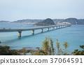 สะพาน,ประเทศญี่ปุ่น,มหาสมุทร 37064591
