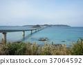 สะพาน,ประเทศญี่ปุ่น,มหาสมุทร 37064592