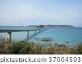 สะพาน,ประเทศญี่ปุ่น,มหาสมุทร 37064593