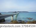 สะพาน,ประเทศญี่ปุ่น,มหาสมุทร 37064594