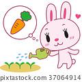 bunny, rabbit, a carrot 37064914