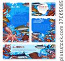 海鮮 魚 食物 37065085