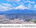 mountain, fuji, mt 37065643