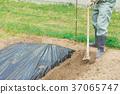 농사 이미지 37065747