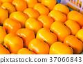 persimmon, kaki, fruit 37066843