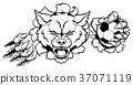 Wolf Soccer Mascot Breaking Background 37071119