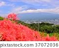 風景 富士山 堆 37072036