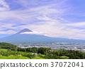 landscape, scenery, scenic 37072041
