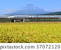 mountain fuji, mt fuji, mt.fuji 37072120