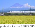 风景 富士山 水稻 37072285
