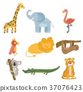 Colored set of animal and birds. Giraffe, elephant 37076423
