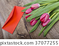 Red envelope with tulips on a wooden desk 37077255
