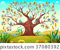 Happy tree with birds, insects and cat 37080392