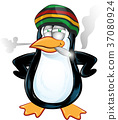 fun jamaican pinguin cartoon 37080924