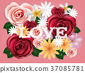 realistics of beautiful rose flowers background 37085781