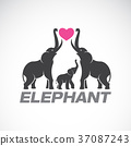 Vector of family elephants and pink heart. 37087243
