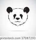 Vector of a panda head design. Wild Animals. 37087293