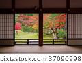 Autumn leaves of Kyoto Takadai-ji Temple 37090998