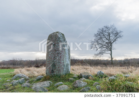 Ancient runestone in a rural landscape 37091751