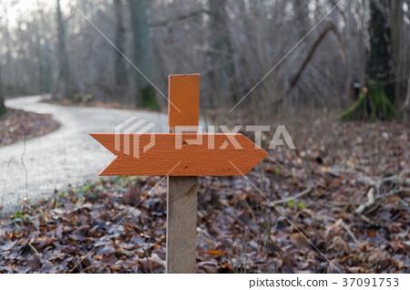 Orange wooden arrow 37091753