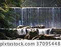 น้ำตกแห่งหุบเขาฮากิโคกาวะ 37095448